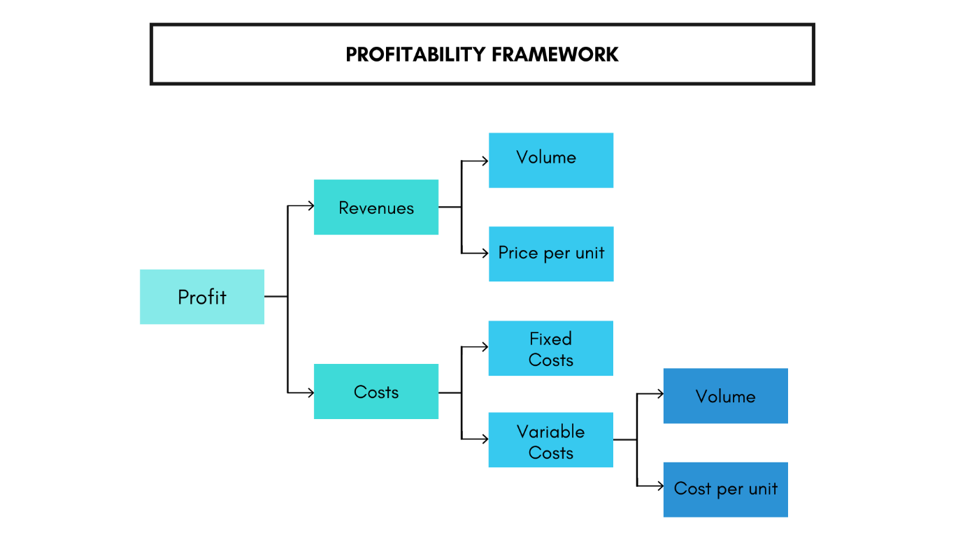 Diagram of the profitability framework