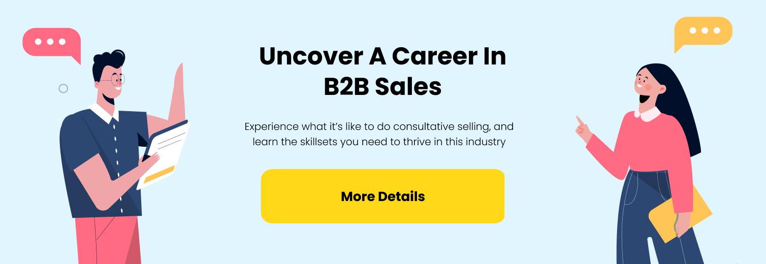 Career in B2B sales